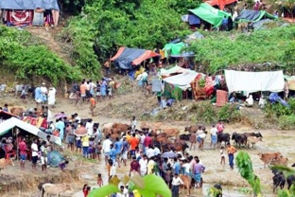 Rohingya man shot dead in Cox's Bazar