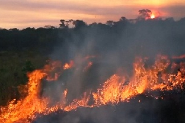 'Blame humans for starting the Amazon fires'
