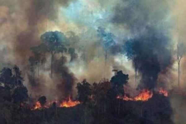Brazil to reject G7 money to fight Amazon fires