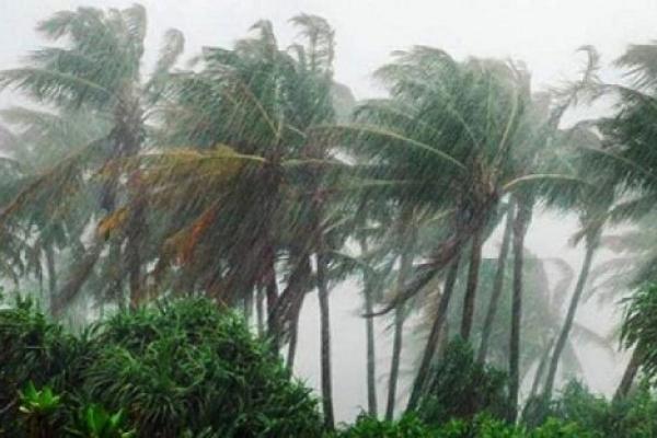Cyclone Bulbul weakens, signal number 3