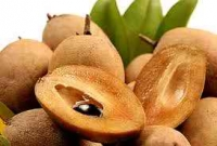 Sapota fruit will fight against cancer
